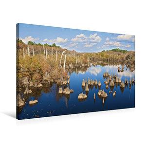 Premium Textil-Leinwand 75 cm x 50 cm quer Dead Lakes