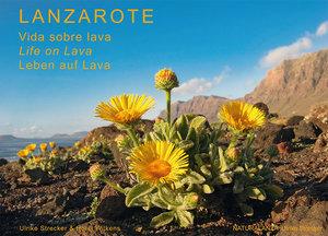 Lanzarote - Leben auf Lava