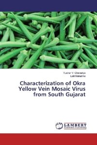 Characterization of Okra Yellow Vein Mosaic Virus from South Guj