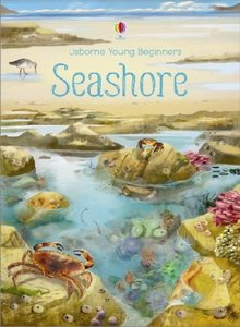 Young Beginners Seashore