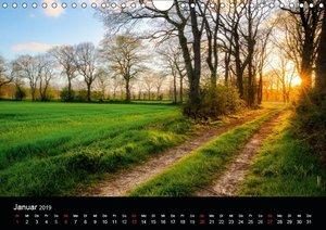 (Ost)Friesische Landschaften (Wandkalender 2019 DIN A4 quer)