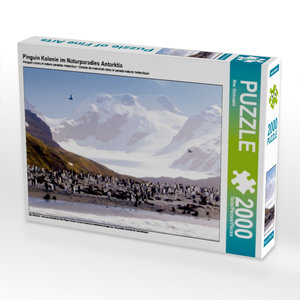 Pinguin Kolonie im Naturparadies Antarktis 2000 Teile Puzzle que