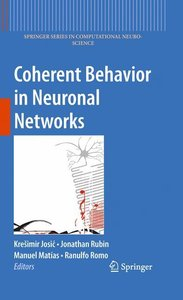 Coherent Behavior in Neuronal Networks