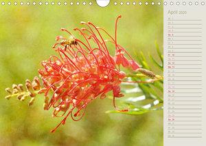 Tropenzauber - Floraler Geburtstagskalender (Wandkalender 2020 D
