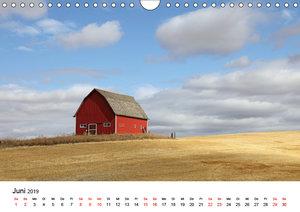 Red Barns - rote Scheunen (Wandkalender 2019 DIN A4 quer)
