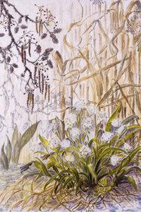 Premium Textil-Leinwand 30 cm x 45 cm hoch Inselchen im Oberlauf