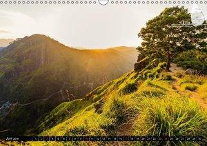 Sri Lanka, eine Reise über die Insel der King Coconut