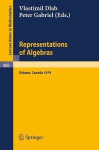Representations of Algebras