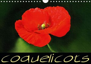Coquelicots (Calendrier mural 2015 DIN A4 horizontal)