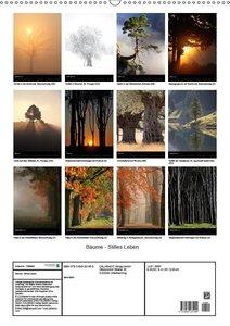 Bäume - Stilles Leben