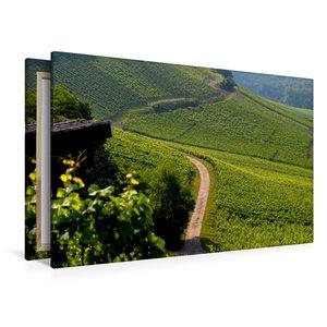 Premium Textil-Leinwand 120 cm x 80 cm quer Weinberge bei Oberde