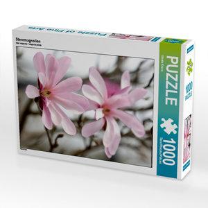 Sternmagnolien 1000 Teile Puzzle hoch