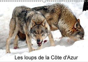 Les loups de la Côte d\'Azur (Calendrier mural 2015 DIN A3 horiz