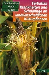 Farbatlas Krankheiten und Schädlinge an landwirtschaftlichen Kul