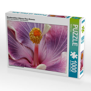 Wunderschöner Hibiscus Rosa Sinensis 1000 Teile Puzzle quer