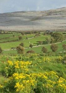 Irland - von Antrim bis Dingle (Posterbuch DIN A3 hoch)