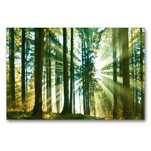 Premium Textil-Leinwand 90 cm x 60 cm quer Durchblick