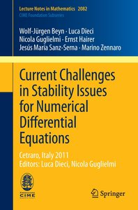 Current Challenges in Stability Issues for Numerical Differentia
