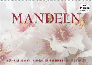 Emotionale Momente: Mandeln