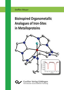 Bioinspired Organometallic Analogues of Iron-Sites in Metallopro