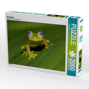 Glasfrosch 2000 Teile Puzzle quer