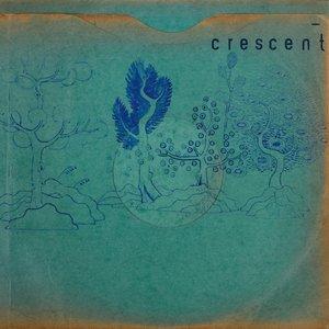 Resin Pockets (LP+MP3)