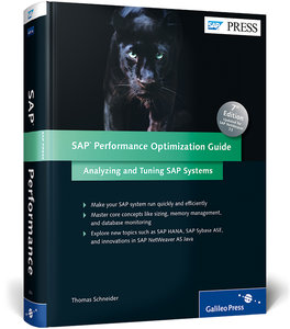 SAP Performance Optimization Guide