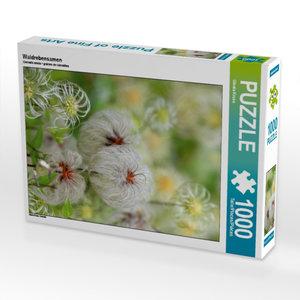 Waldrebensamen 1000 Teile Puzzle hoch