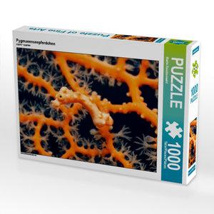 Pygmaeenseepferdchen 1000 Teile Puzzle quer