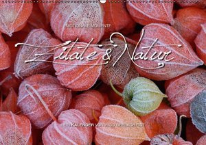 Emotionale Momente: Zitate & Natur (Wandkalender 2016 DIN A2 que