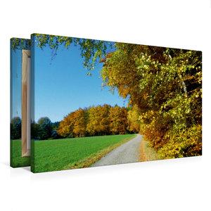 Premium Textil-Leinwand 75 cm x 50 cm quer Goldener Herbst