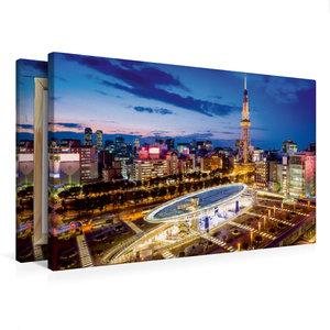 Premium Textil-Leinwand 75 cm x 50 cm quer Nagoya Oasis 21