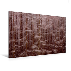 Premium Textil-Leinwand 120 cm x 80 cm quer Gansfelsen