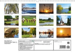 Neustadt am Rübenberge Natur in Stadtnähe (Wandkalender 2020 DIN