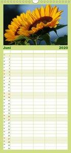 Sonnenblumen - Familienplaner hoch