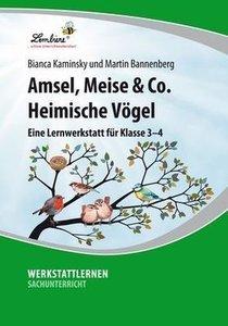 Amsel, Meise & Co: Heimische Vögel (CD-ROM)