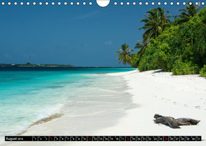 Malediven - echt - bunt - anders (Wandkalender 2019 DIN A4 quer)