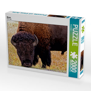 CALVENDO Puzzle Bison 2000 Teile Lege-Größe 90 x 67 cm Foto-Puzz