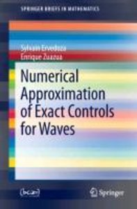 Numerical Approximation of Exact Controls for Waves