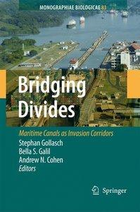 Bridging Divides