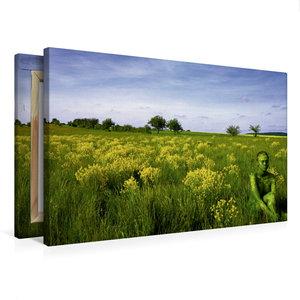 Premium Textil-Leinwand 75 cm x 50 cm quer Brachfläche bei Gaste
