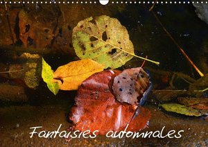 Fantaisies automnales (Calendrier mural 2015 DIN A3 horizontal)