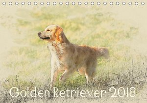 Golden Retriever 2018