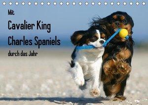 Mit Cavalier King Charles Spaniels durch das Jahr