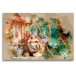 Premium Textil-Leinwand 120 cm x 80 cm quer Die junge Katze unte