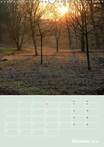 Bolmke - Naturschutzgebiet Dortmund (Wandkalender 2019 DIN A3 ho