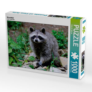 Waschbär 1000 Teile Puzzle quer