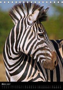 Wundervolles Afrika