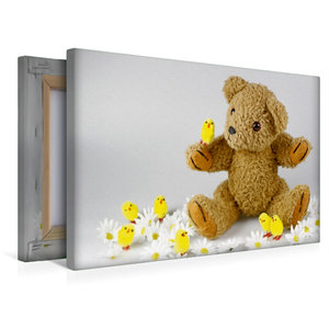 Premium Textil-Leinwand 45 cm x 30 cm quer Teddy KramBam