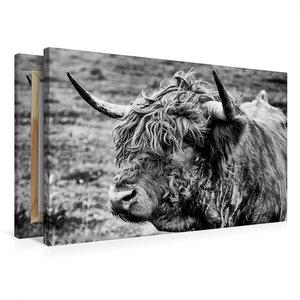 Premium Textil-Leinwand 75 cm x 50 cm quer Schottisches Hochland